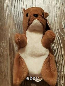 Very Rare Beanie Baby Nuts style 4114 Mint Condition with Plastic Tag (Errors!)